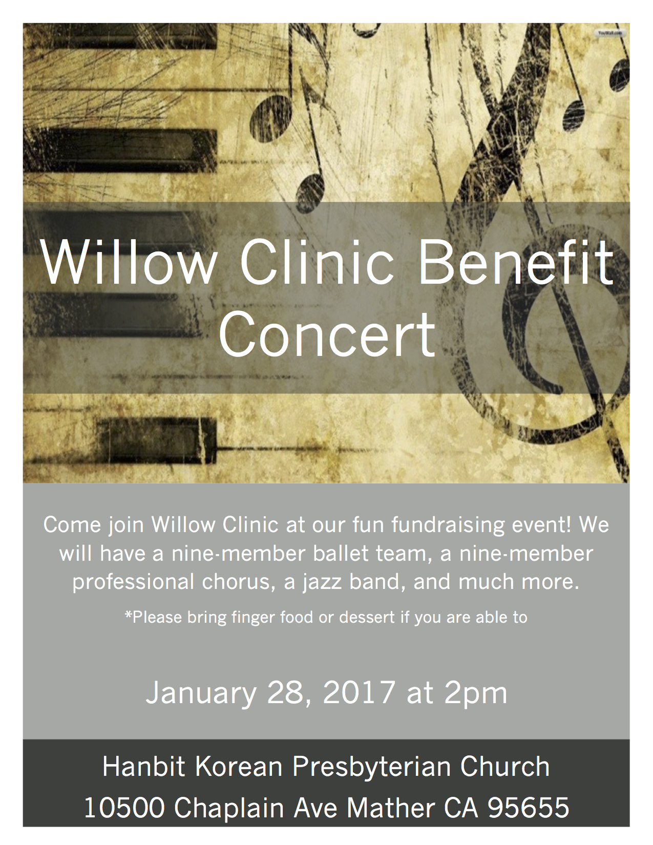 Willow Benefit Concert (1)